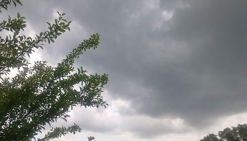 الطقس يوم الخميس: جريحة وصقيع وسحب منخفضة وضباب