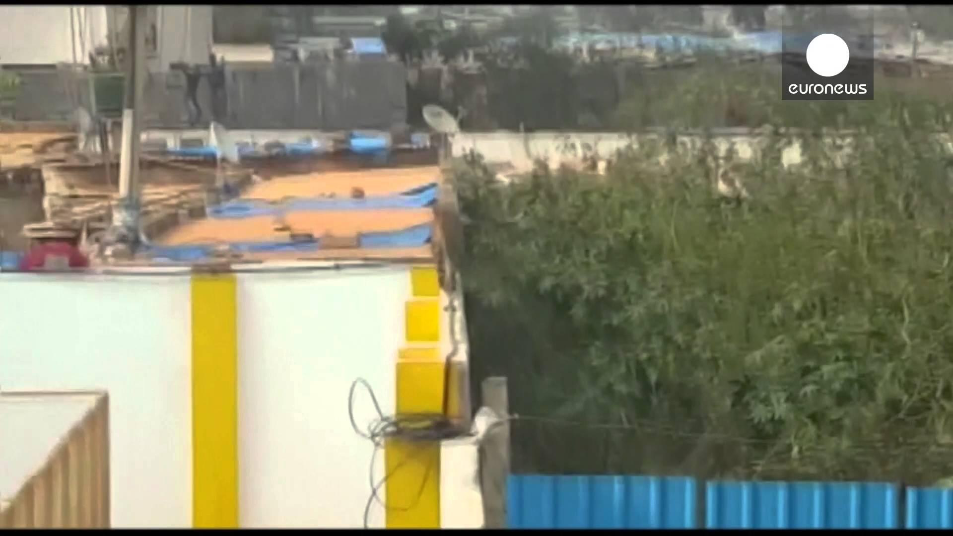 نمر يهاجم عاملا داخل احدى المدارس بالهند
