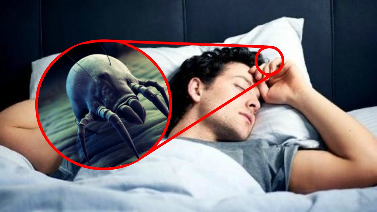 10 حقائق مخيفة لا تعرفها عن سريرك