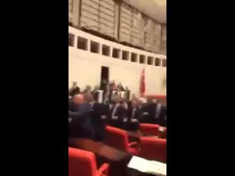شجار فى البرلمان  وضرب بالاحذية وسب وقذف