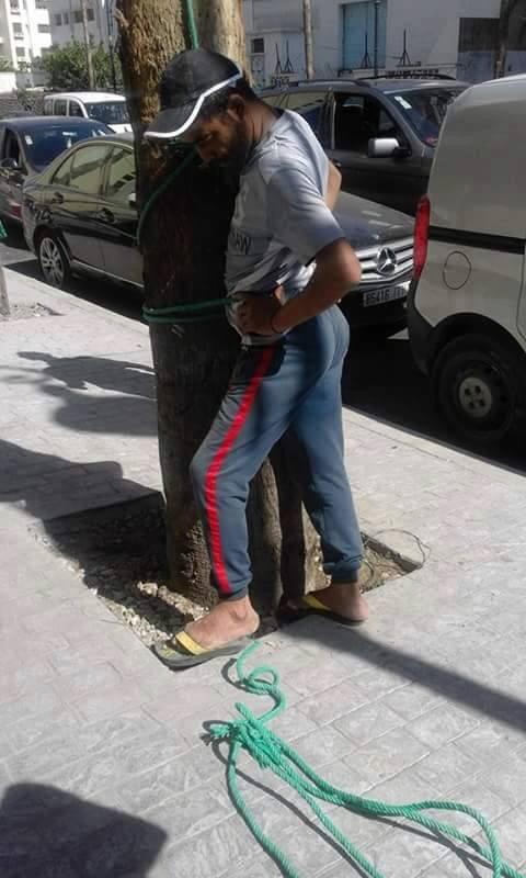 شباب طنجة يربطون معتدي على امرأة في شجرة