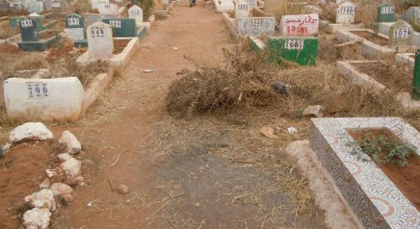 مواطنون ينبشون القبور القديمة ويطردون الأموات القدامى لدفن ذويهم بسلا
