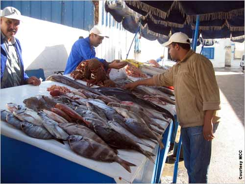 مواصلة ارتفاع اثمان السمك والفواكه في السوق المغربية في رمضان