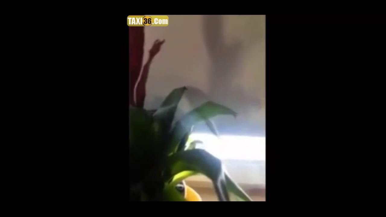 نايضة بلا قرطاس..مغربية تقصف السورية و زوجها المغربي
