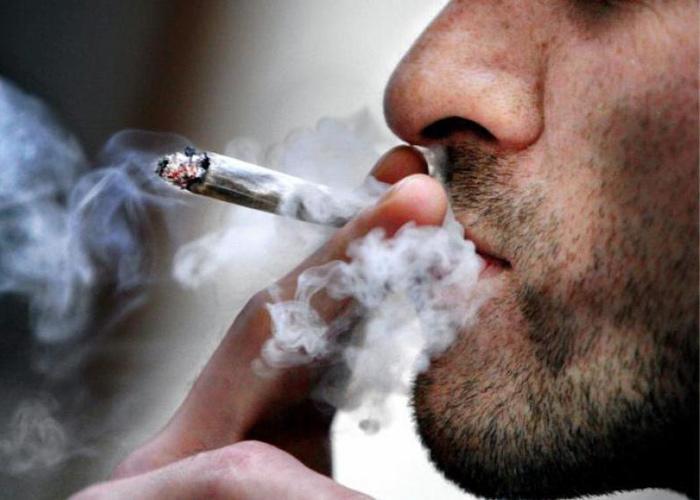 900 ألف مستهلك للمخدرات في الجزائر!