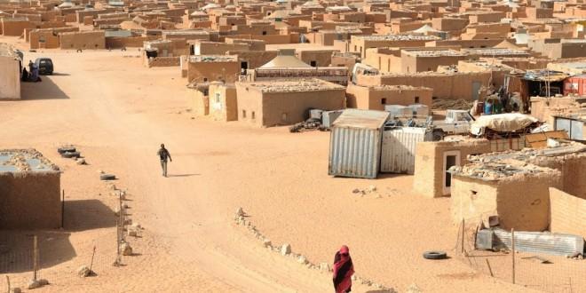 نواب أوروبيون يسائلون موغيريني حول رفض الجزائر منح تأشيرات الدخول لمنظمة غير حكومية أوروبية