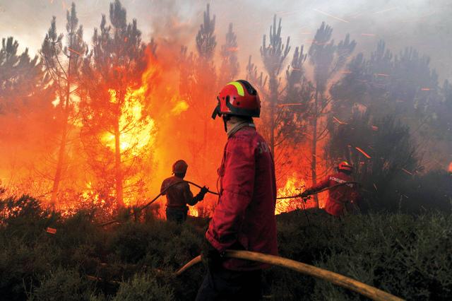 إقليم العرائش..السيطرة على حريق غابوي أتى على نحو 40 هكتارا