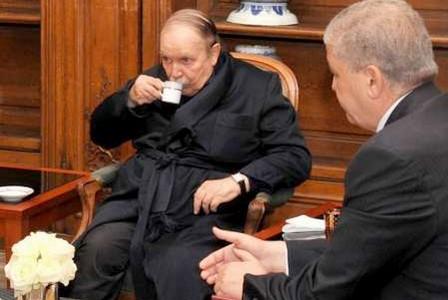صدمة الجزائر  من رجوع المغرب للاتحاد الافريقي