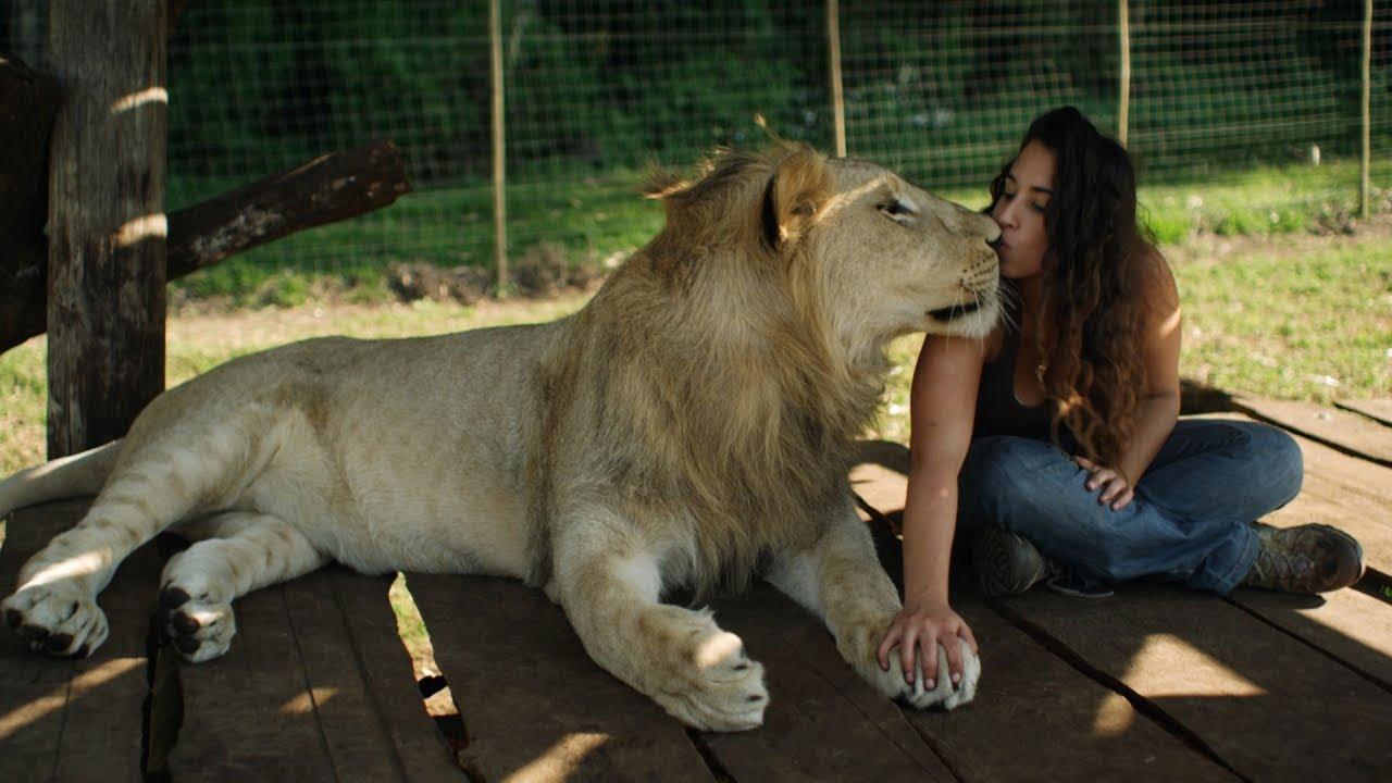 صداقات لا تصدق بين البشر وحيونات مفترسة