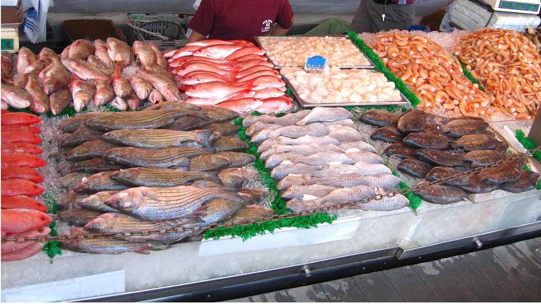 المغرب يخسر 90 مليار درهم سنويا بسبب استنزاف الأوروبيين للثروة السمكية