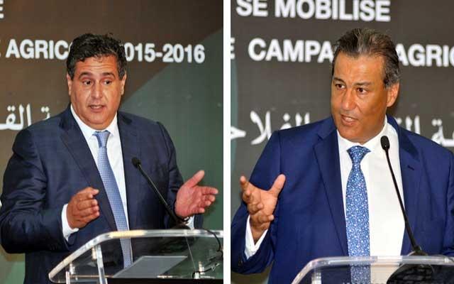 القرض الفلاحي يفشل في دعم الفلاحة والفلاح المغربي
