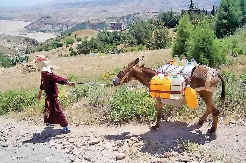 حرب الماء تهدد المغرب