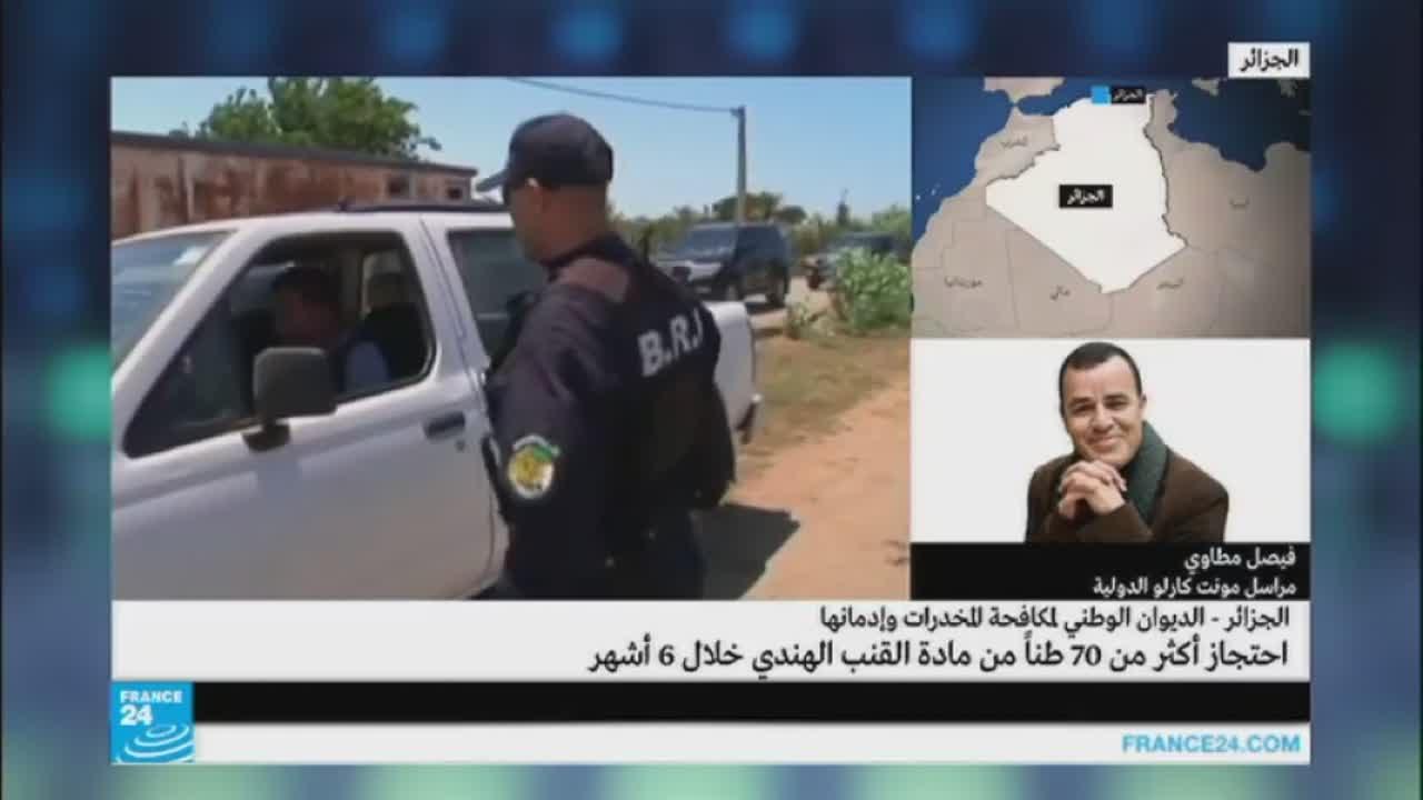 الجزائر: احتجاز أكثر من 70 طنا من مادة القنب الهندي خلال 6 أشهر