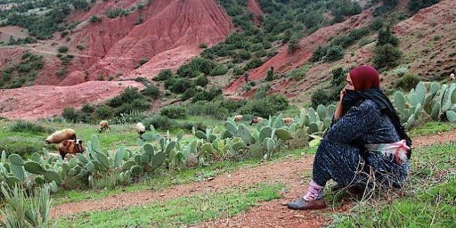 الجفاف كان له تأثير قوي على سوق الشغل في القطاع الفلاحي