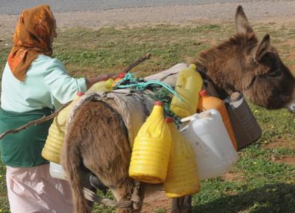 3.5 ملايين مغربي محرومون من الماء الصالح للشرب في القرن 21