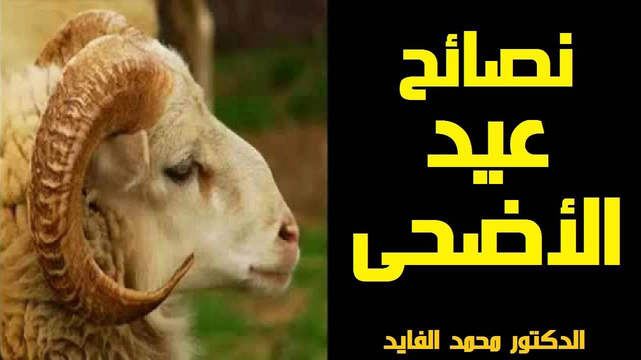 نصائح عيد الاضحى – الدكتور محمد الفايد