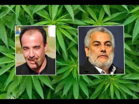 شاهد الياس العماري و عشبة الكيف و الانتخبات المغربية على قناة امراتية