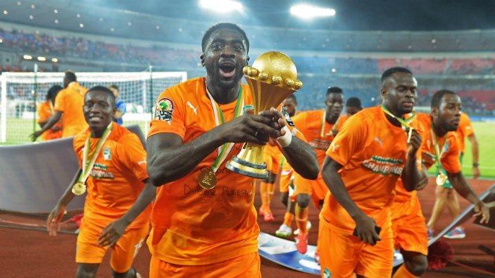 كأس أمم إفريقيا الغابون 2017: المنتخبات المتأهلة إلى النهائيات