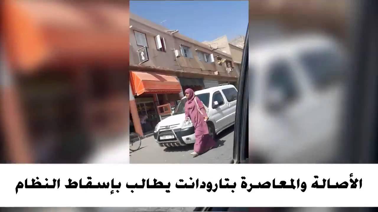 أنصار الأصالة و المعاصرة يطالبون بتغيير النظام خلال حملة التراكتور الانتخابية بتارودانت