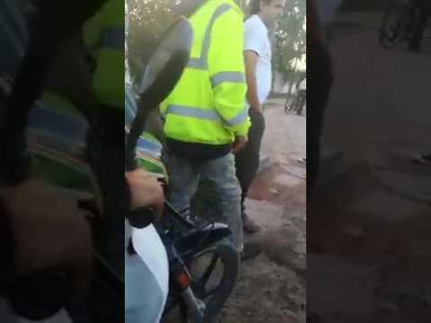 شاهد التدخل الذي أثار إعجاب الجميع لأحد الصقور لمنع سارق من سرقة أحد المواطنين بانزكان