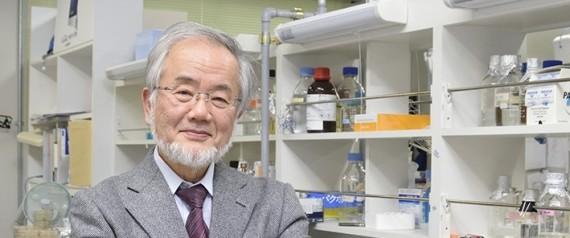 عالم ياباني يفوز بجائزة نوبل للطب