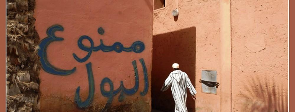 ربع المغاربة لا يتوفرون على مراحيض