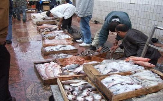 بائع سمك في طنجة ينفي ما أوردته مواقع إلكترونية عن تعرضه للاعتداء وحجز سلعته