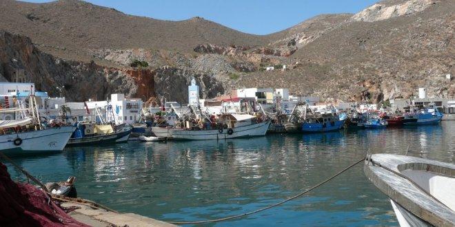 جامعة غرف الصيد البحري تتضامن مع مهني الصيد بالحسيمة بعد مقتل محسن فكري